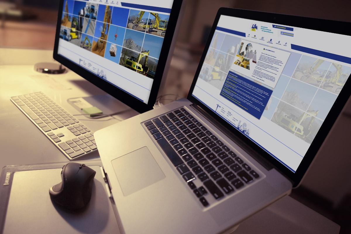 Site-Internet-Perpignan : LSM